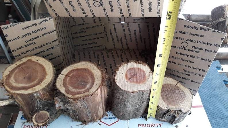 Craft Supply,Tree Stumps,Log Sets Cedar Logs,Rustic Wedding Decor,Rustic Centerpiece,Wood Logs,Shelf Decor,Garden Wedding,Country Wedding