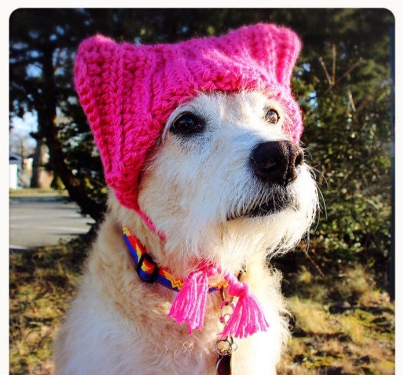 708bbbcde77 Pink cat hat for dog dog pussy hat women s rights hat