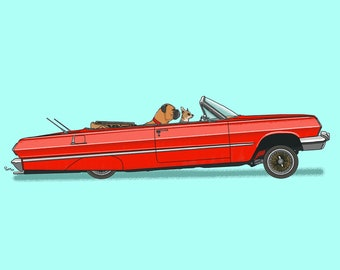 Rusty the Boxer and Cheech the chihuahua bouncing in their lowrider Impala art print! Dogs Driving Things Series 5
