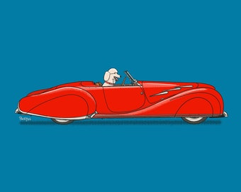 Princess the Poodle driving her vintage red roadster art print! Dogs Driving Things Series 5