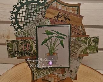Claudia's Plant - image no 251