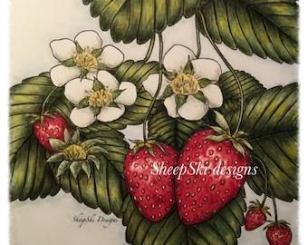 Strawberry Season  - image no 33