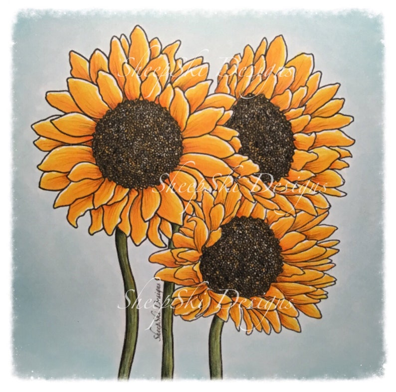 Sunflowers   image no 112 image 0