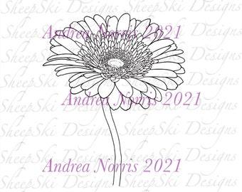 Gerbera Daisy  - image no 245
