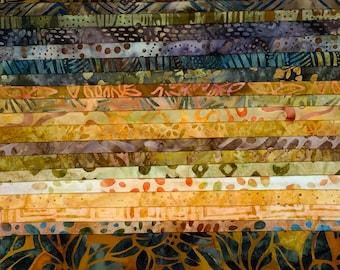 Multi FQ-BOTANICA 35 Piece Fat Quarter Bundle Quilting Treasures Botanica