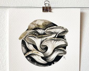 PLEUROTUS OSTREATUS - art print, nature print, mushroom illustration, mushroom art, wall art, ink painting, mycology lover gift, gift idea