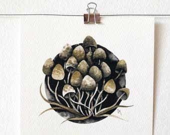 PSILOCYBE SEMILANCEATA - art print, nature print, mushroom illustration, wall art, ink painting, mycology lover gift, gift idea