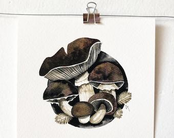 STROPHARIA RUGOSOANNULATA - art print, mushroom illustration, mushroom art, wall art, India ink painting, mycology lover gift, gift idea