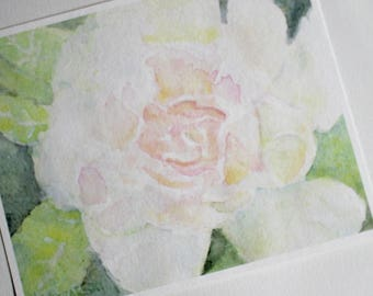 Rose Art Picture White Summer Roses Flower Watercolor Print Gardener Gift Ideas for Her Flowers Watercolour Painting Home Office Wall Decor