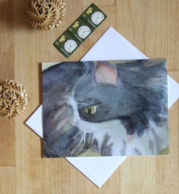 Cute Kittens Cat 12 mini notecards Tabby Black White Kitten blank inside