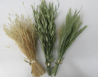 Dried grass stems bunch dry wild grass flower seeds wreath embellishment grass decoration dried wildflowers for crafts biodegradable