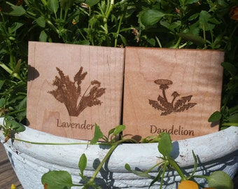 Gift For Gardener, Herbalist, Birthday Gift, Engraved Coasters, 2