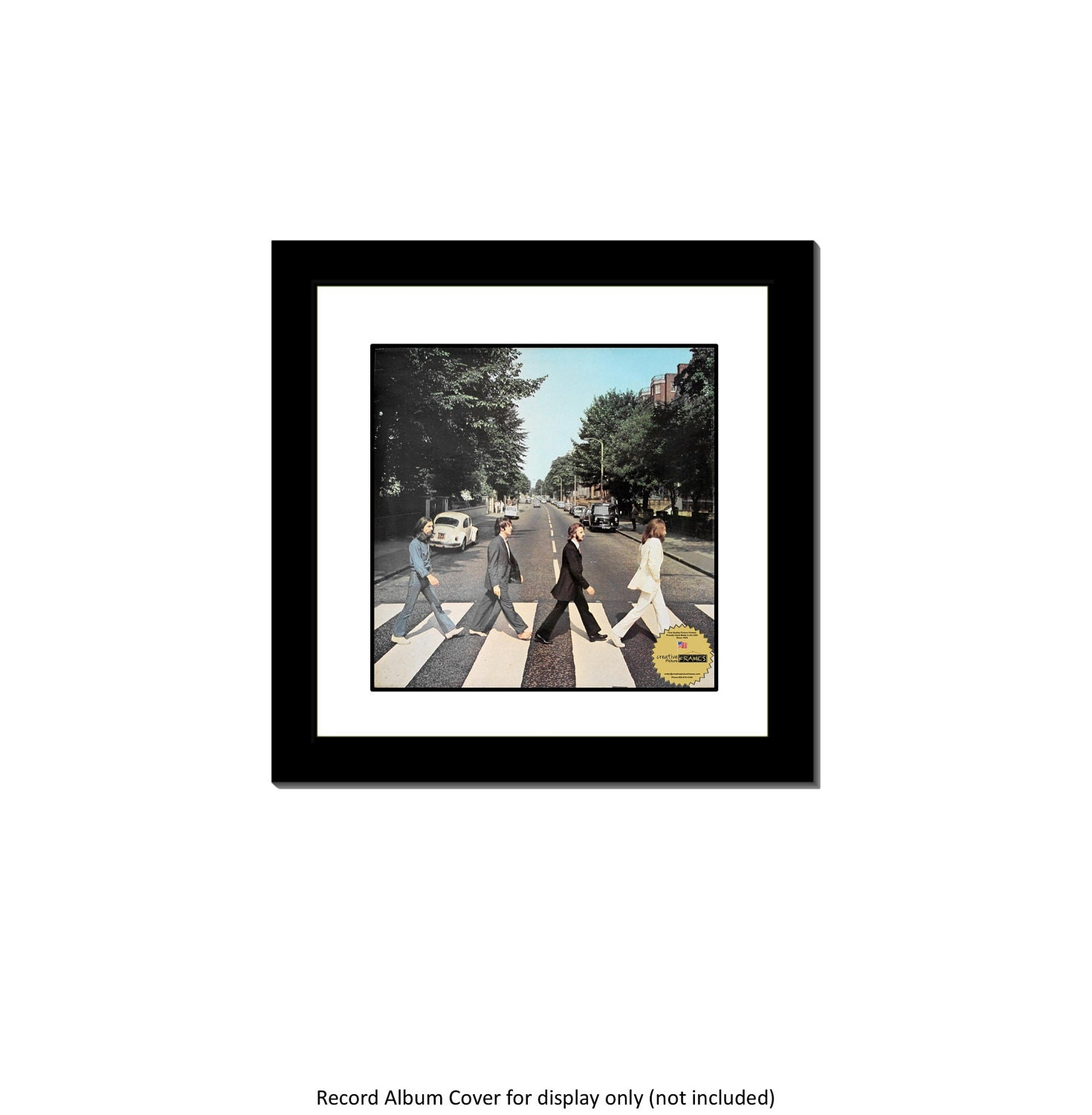 LP Vinyl Record Cover Frame with Mat LP Not Included