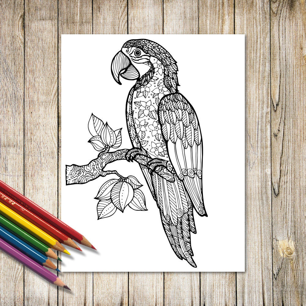 Parrot Ara Exotic bird with floral pattern Zentangle Art Print | Etsy