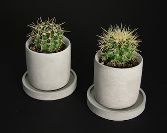 Vase with concrete flowerpot saucer