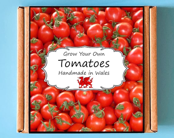 Grow Your Own Tomato Plant Kit - Indoor Gardening Gift