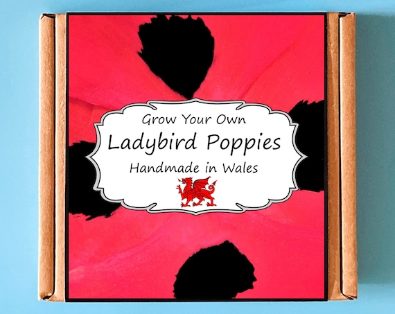 Grow Your Own Ladybird Poppy Plant Kit - indoor gardening gift for adults or children - perfect birthday gift