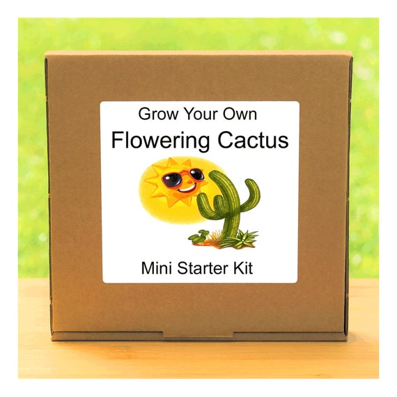 Grow Your Own Colourful Flowering Cactus Plant Growing Kit – Complete beginner friendly indoor starter kit – Gift for men, women or children