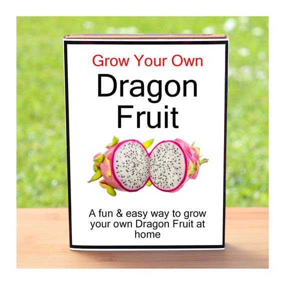 Gardening Gift For Men Or Women Who Have Everything – Grow Your Own Dragon Fruit