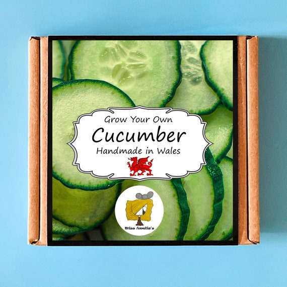 Grow Your Own Cucumber Plant Kit. Indoor Gardening Gift. Perfect Birthday Gift For Adults, Children, Kids. Vegetable Planting Kit.