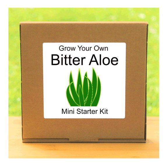 Grow Your Own Bitter Aloe Plant Growing Kit – Beginner friendly complete starter kit - indoor gardening gift for men, women or children