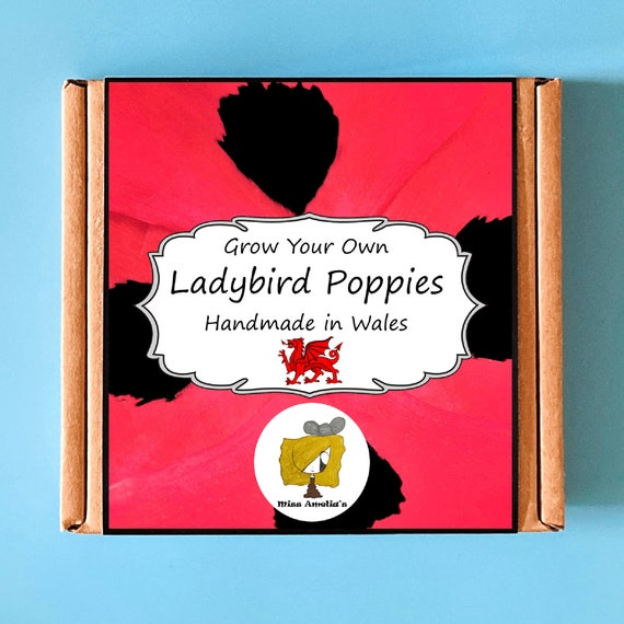 Grow Your Own Ladybird Poppy Plant Kit. Indoor Gardening Gift. Perfect Birthday Gift For Adults, Children, Kids. Flowers Planting Kit.