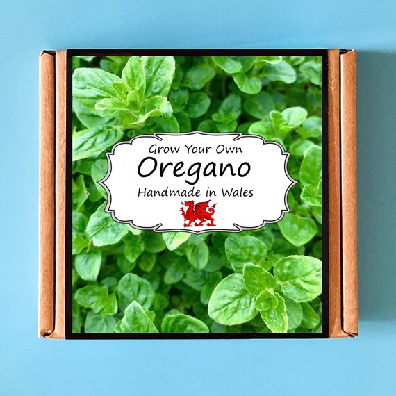 Grow Your Own Oregano Herb Kit - Indoor Gardening Gift