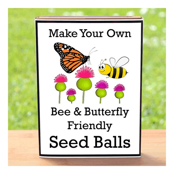 Seed Balls Kit - Make Your Own Wildflower Seed Bombs