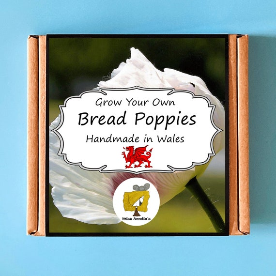 Grow Your Own Bread Poppy Kit. Indoor Gardening Gift. Perfect Birthday Gift For Adults, Children, Kids. Flowers Planting Kit.