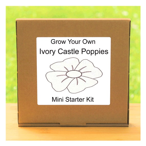 Grow Your Own Ivory Castle Poppies Plant Growing Kit – Beginner friendly indoor gardening starter kit – Gift for men, women or children