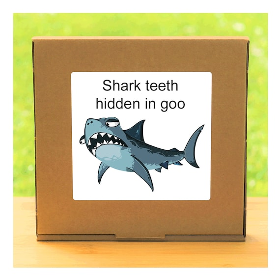 Your own Shark Teeth hidden in a colourful squishy gel – Shark Teeth Fossil discovery kit for children