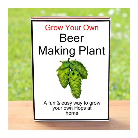 Gardening Gift For Men Or Women Who Have Everything – Grow Your Own Hops Plant