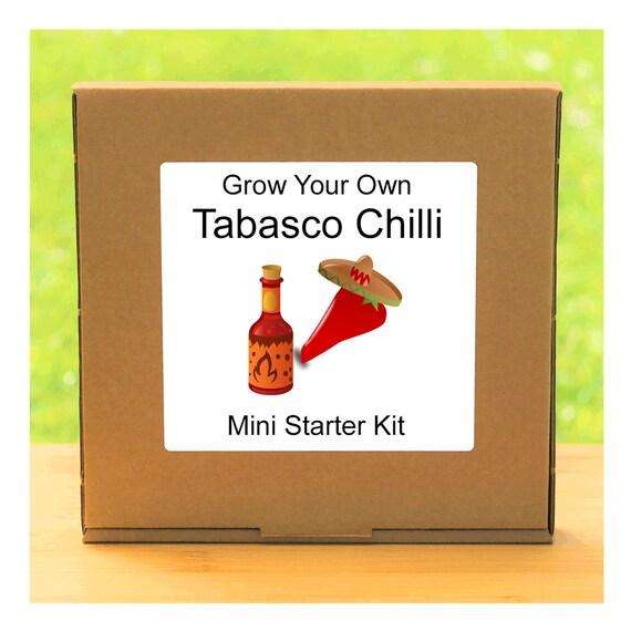 Grow Your Own Hot Tabasco Chilli Plant Growing Kit – Beginner friendly indoor gardening starter kit – Gift for men, women or children