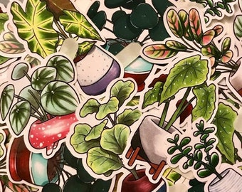 Plant Mom Stickers, Plant Dad, Waterproof Stickers, Cute Stickers, Plant Stickers, Succulent Stickers, Plant Sticker,Kawaii,Botanical,flower
