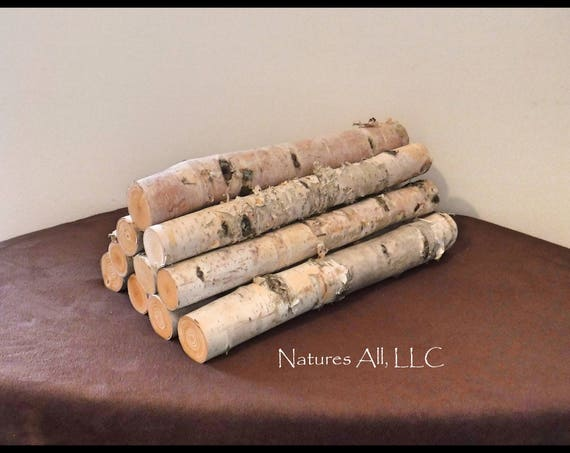 White Birch logs/White Birch Fireplace Logs/10 Piece Set/16 Inch Length/For Weddings & Home Décor/Shipping Included