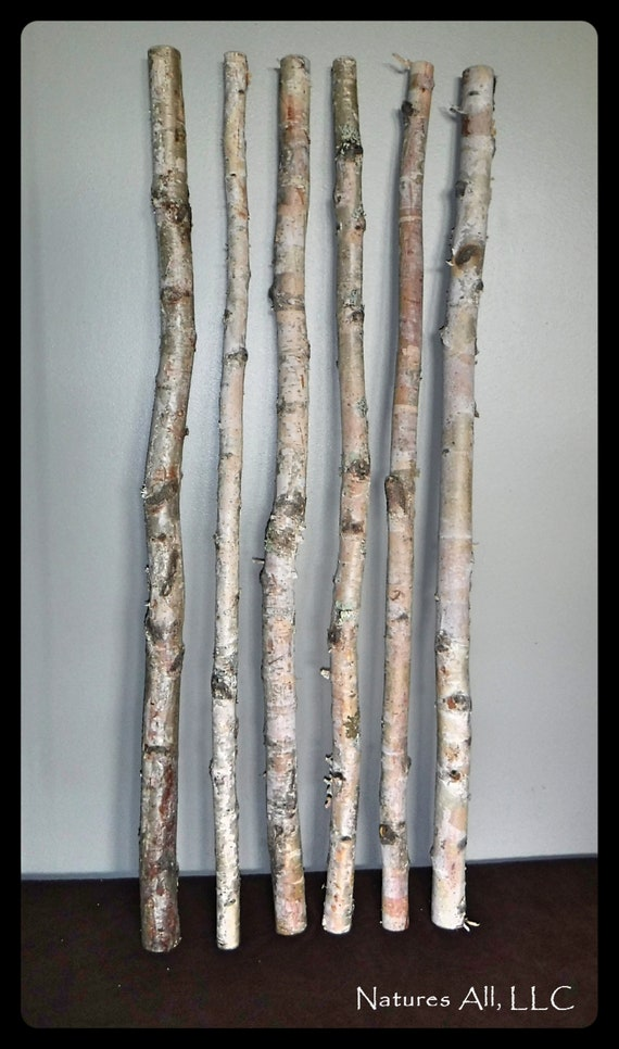 White Birch Sticks/Decorative White Birch/ 6 PC/3 Ft. Lengths/White Birch Pole/Rustic Wedding And Home Decor