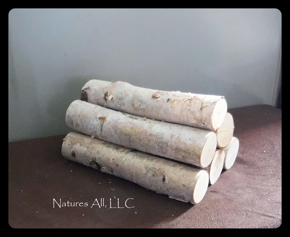 White Birch Fireplace Logs/Empty Fireplace Decor/Fill A Space/6 PC. Set/12 Inch Lengths/2-2.75 Inch Diameters/Shipping Included