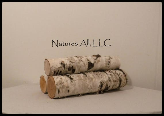 "White Birch Fireplace Logs/Empty Fireplace Decor/3 PC Set/12"" Lengths/4""-5"""" Diameters/ Rustic Weddings And Home Décor"