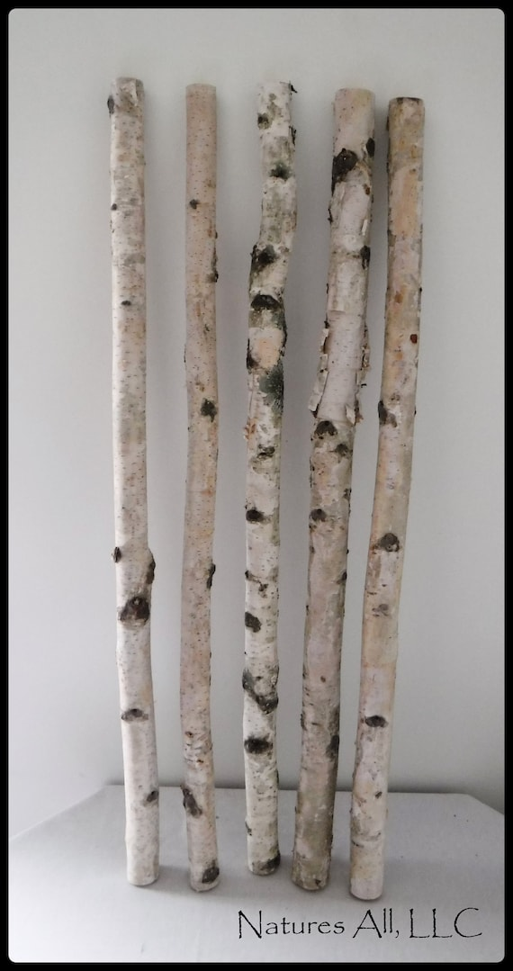 White Birch Sticks/Decorative White Birch/ 5 PC/3 Ft. Lengths/White Birch Pole/Rustic Wedding And Home Decor