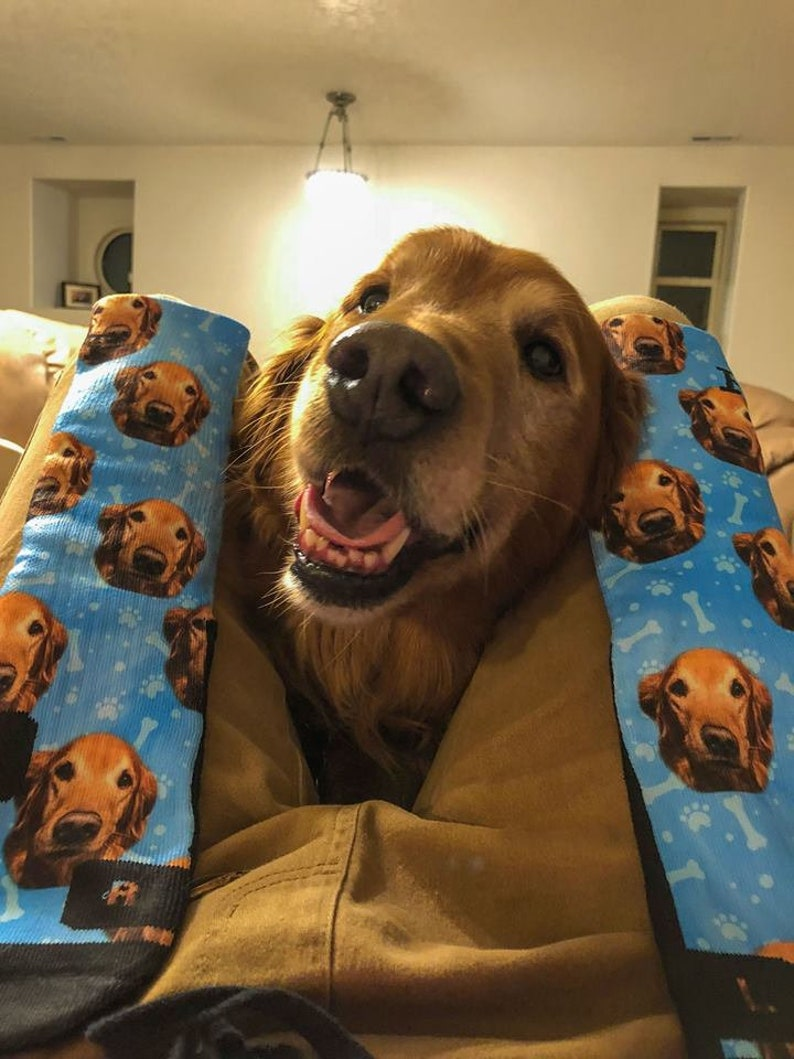 Gifts For Golden Retriever Owners - Customized dog socks.