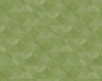 480, asparagus, Riley Blake, cotton quilt, cotton designer
