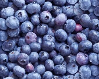Blueberries, 209, Elizabeth's Studio, cotton, cotton quilt, cotton designer