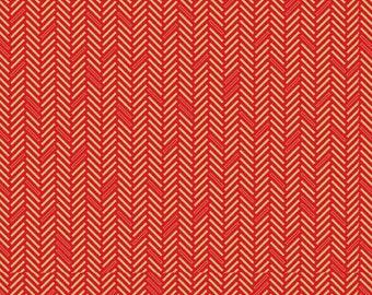 COTTON: Basic Color