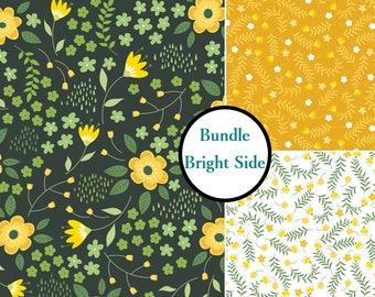 Bundle, 3 prints, Bright Sid, 1 of each print, Bundle, collection