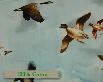 Giordano, Wild geese, 100% Cotton