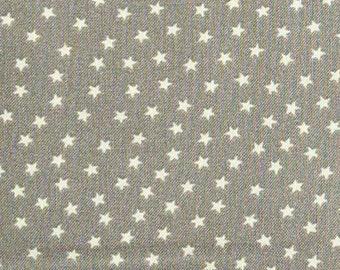 Star, gray, Andover, 9166, cotton, cotton quilt, cotton designer