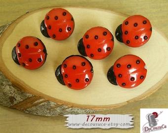 6 buttons, 17mm, Beetle, vintage, BF14, (Reg 3.60)