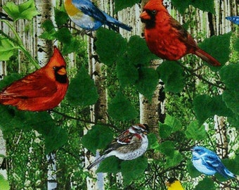 Bird, Blue Jay, Cardinal, Goldfinch, Timeless Treasures, 9160, fabric, cotton, quilt cotton