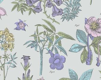COTTON: Flower