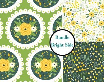 Kit 3 prints, Bright Sid, 1 of each print, Bundle, collection, (Reg 11.97 - 53.97)